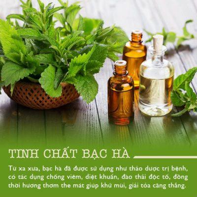 chua tri seo tham bang tinh dau bac ha
